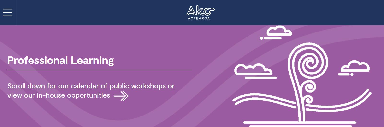 Screenshot from the Ako Aotearoa website.